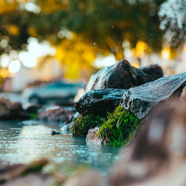 Ruisseau 1 drainage lymphatique
